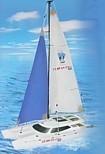 """Kuģa modelis, radiovadāms buru katamarāns """"Pilotage Gemini"""", RTR"""